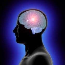 IQ proton prostate trivia